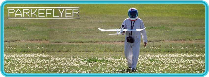 ParkeFlyer walking in field
